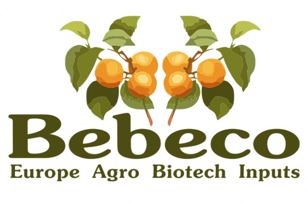 Bebeco ltd